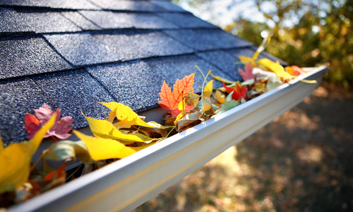 Residential Gutter Cleaning service in Sydney
